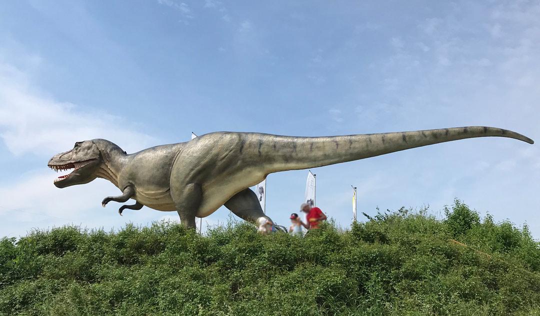 dinosauriermuseum altmuehltal