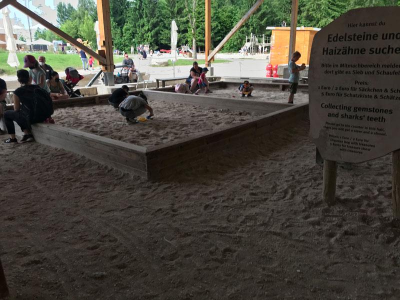 mitmachstation fossilien suchen